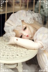 Limited Basic Peanut (Reverie ver.)(White Skin with makeup)