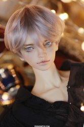 [In Stock] Canape Cut (Platina LIMITED WIG)