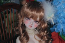 Yuri : Limited Faceup (Malangl)