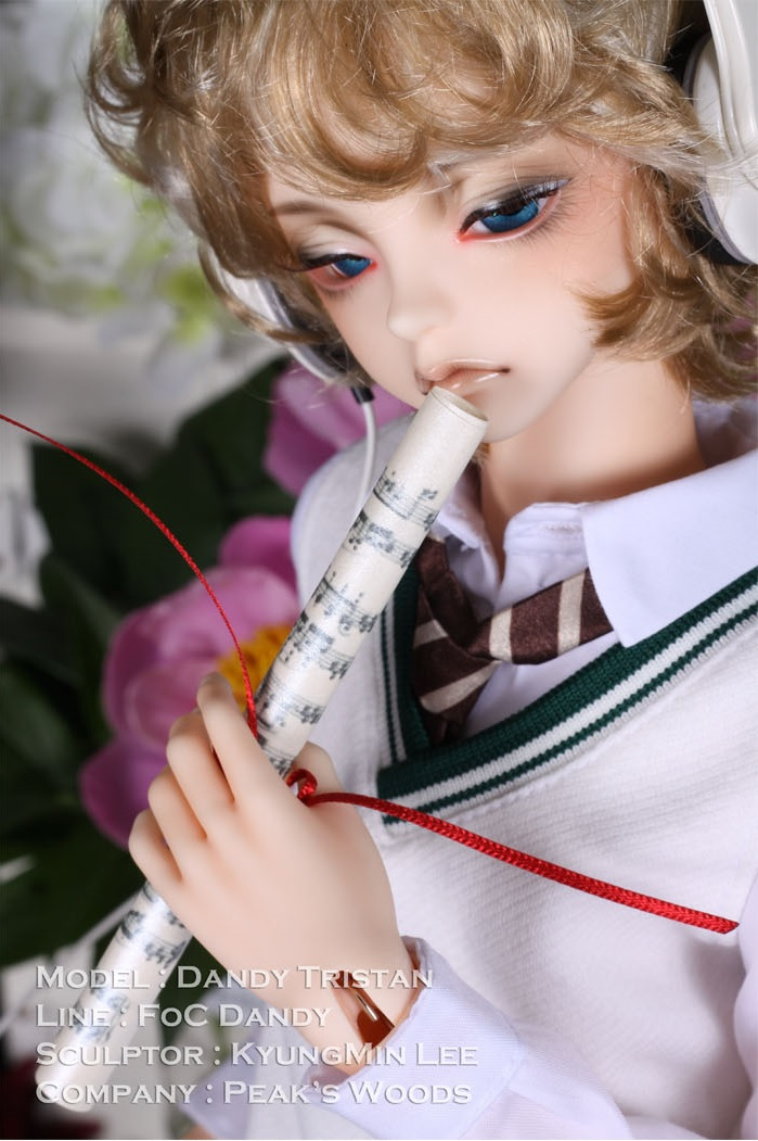 FOC Dandy 61cm Tristan with Face-up (Normal Skin)